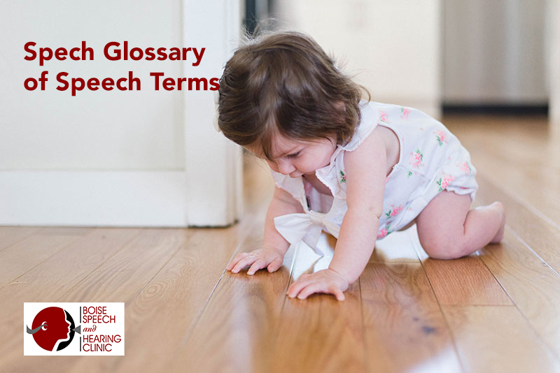 Glossary of Speech Terms