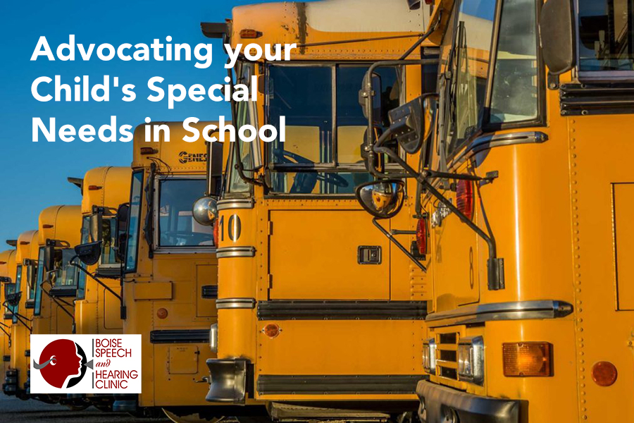 Advocating your Child's Special Needs in School